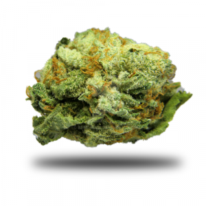 mk ultra the weedsite